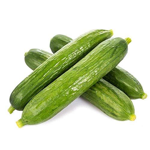 Mini Fruit Gurkensamen Dutch Cucumber Seeds 300 Seeds-300 Schwarzöl