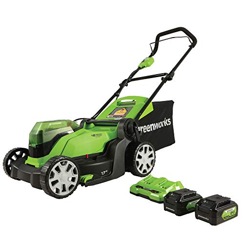 Greenworks 2 x 24V (48V) 17-inch Lawn Mower, 2 x 24V 4Ah USB (Power Bank) Batteries and Dual Port Charger Included, MO48B2210