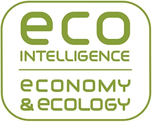 Rowenta Eco Intelligence DW6010D1