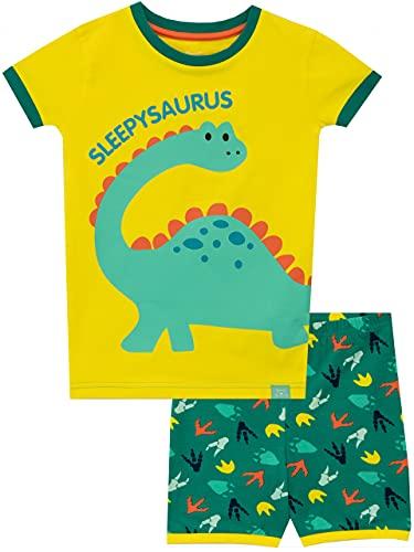 Harry Bear Boys Pyjamas Dinosaur Snuggle Fit Yellow 3-4 Years