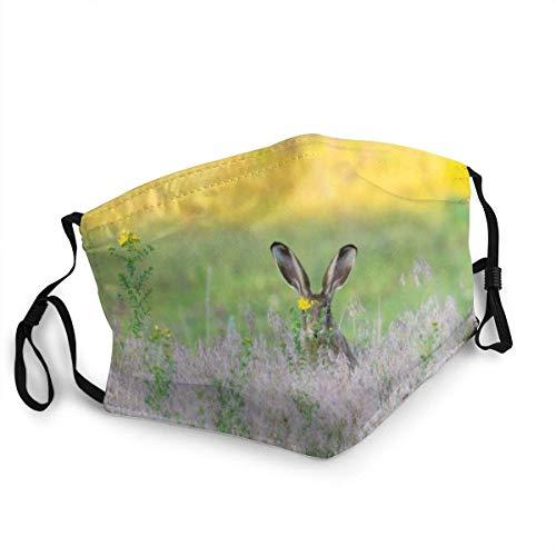 yting Atmungsaktive Gesichtsmaske Europäische Hase Sun-Proof Fashion Bandana Kopfbedeckung zum Angeln