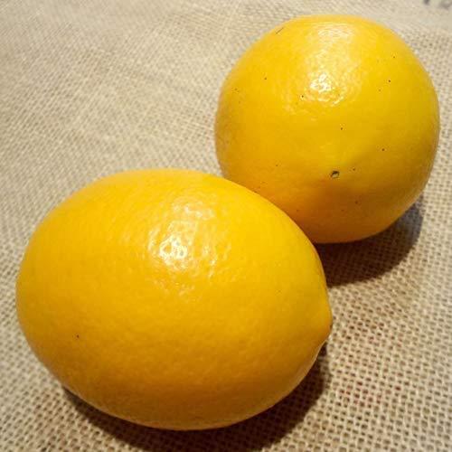 わけあり品農薬・防腐剤・防カビ剤不使用ノーワックスレモン3kg熊本産無農薬