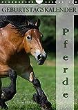 Pferde / Planer (Wandkalender 2020 DIN A4 hoch): 13 schöne Pferdemotive auf einem Geburtstagskalender (Planer, 14 Seiten ) (CALVENDO Tiere)