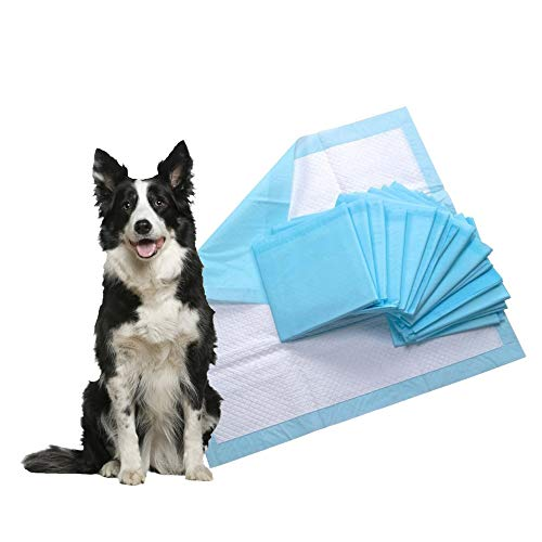 ConformHome Empapadores, toallitas de Entrenamiento para Mascotas, higíenicas y súper absorbentes (60x60cm, 40 Unidades)