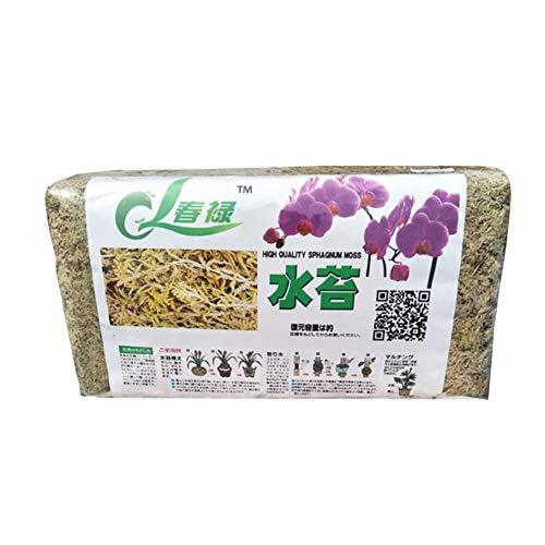 FLOX Sphagnum Moss, 6 / 12L getrockneter organischer Dünger für Orchideen-Phalaenopsis-Pflanzenpflanzen für Tropische Pflanzen