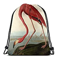 UDDesign オードゥボンアメリカンフラミンゴ ジムサック・ナップサック スポーツバック バックパック 運動 旅行 部活用 軽量 リュックサック 巾着 バッグ シューズ ケース