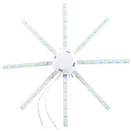 LEORX LED Deckenleuchte Deckenlampe 24W 1920LM 6000K-6500K AC 220V (Weiß)