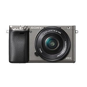 Dual Cargador de batería doble carga para la cámara Sony Alpha ...