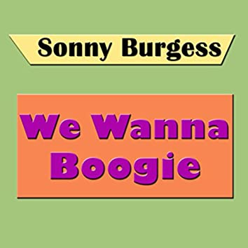 We Wanna Boogie