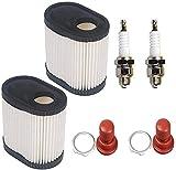ZW18U Carburador Compatible Reemplace 36905 Bulbo de imprimación de Filtro de Aire 36045A con bujía para Tecumseh Lawn Mowner Suponga Kits (Conjunto de 2) Renovación de carburador (Size : 2 Set)