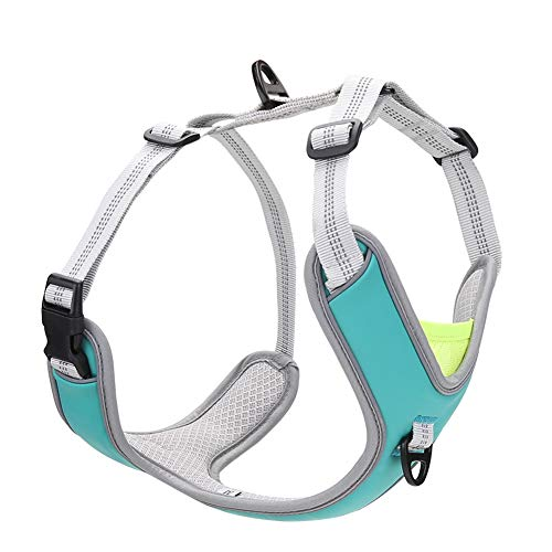 No Pull Dog Harness, Easy Dog Vest Harness with Damping Belt Adjustable Soft Padded, Dog Walking Harness with 2 Metal Leash Clips, Reflective Pet Harness for Medium/Large Dogs (Blue, M(18.9-25.4''))