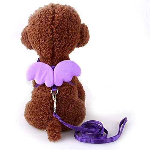 Kiu hondenriem voor dieren, kleine engel, borstband, vleugels, kat, honden, lijn