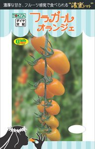 【フラガール・オランジェ】ミニトマトの種 (8粒)