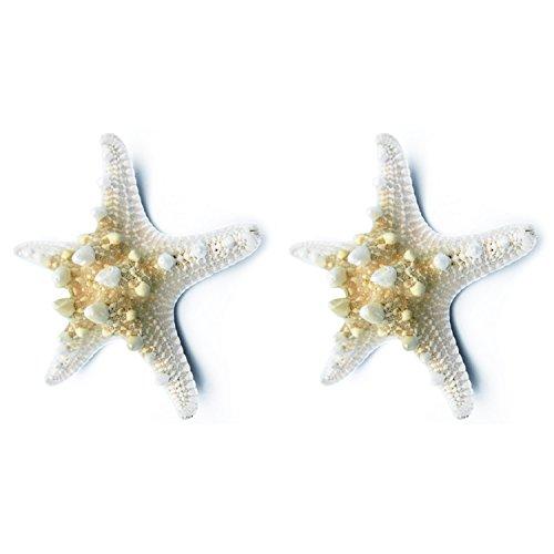 SODIAL 2 unids Estrella de mar Natural Shell Estrella de mar Que Hace la Decoracion del Arte de Bricolaje