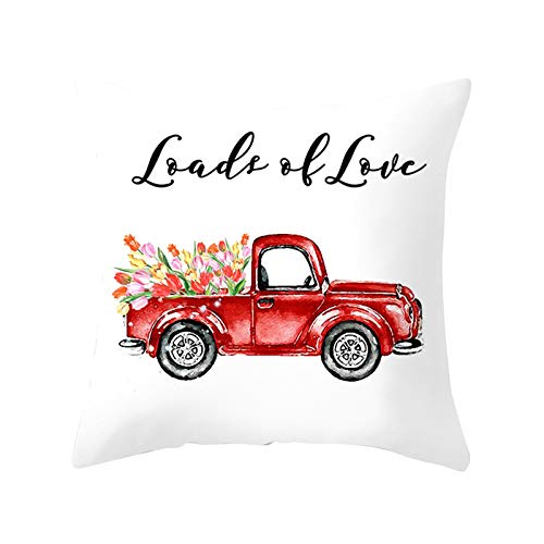 Sylar Día de San Valentín Throw Pillow Amor Impreso Piel de melocotón Sofá Funda de Almohada Decoración, para el Día de San Valentín