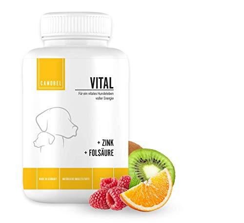 Canobel VITAL - Vitamine für Hunde - Leckerlis mit Mineralien zur Stärkung des Immunsystems - 1x 300 g