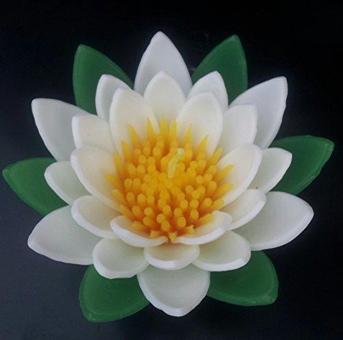 WasiWax Bougie Grand Modèle Vert/Blanc Water Lily Bougie Flottante,