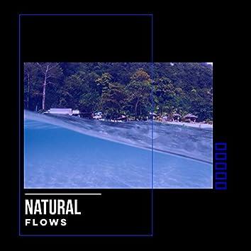 # Natural Flows