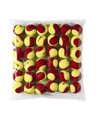 Wilson Starter Orange Tennis Ball - 48 Pack