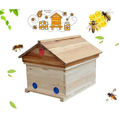 TANCEQI Bienenstockbox, Auto Flowing Honey Hive Bienenstock Rahmen Imkerei Brut Zedernholz Box Set Holz Hausrahmen Kamm Bienenkästen Für Imker Für Wildbienen Insekt
