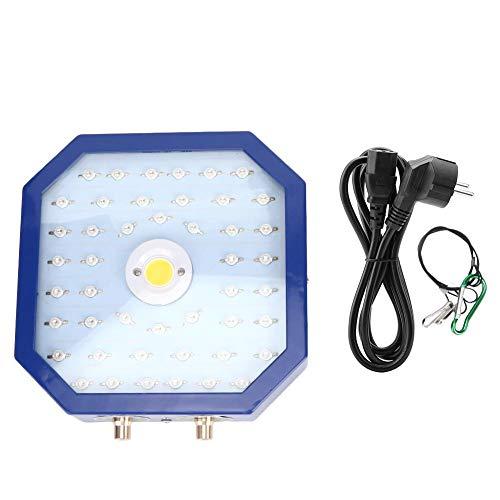 Indoor-Wachstumslampe, LED-Wachstumslampe, IP67 Wasserdicht für den Garten(European regulations)