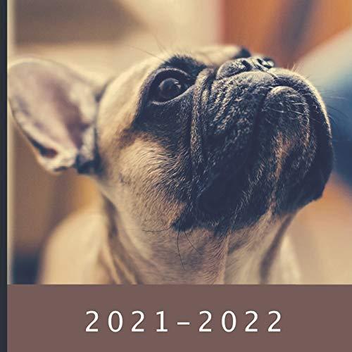 2021 - 2022: 18 Month Calendar | Monthly Photo Calendar | July 2021 - December 2022 | Monthly Calendar with U.S./UK/ Canadian/Christian/Jewish/Muslim Holidays | French Bulldog Calendar