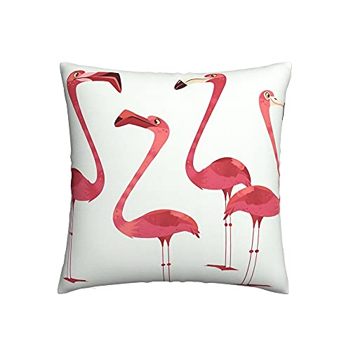 Serity Flamingos - Fundas de almohada (multitamaño) exquisita tecnología de costura, textura suave y cómoda, 55,8 x 55,8 cm