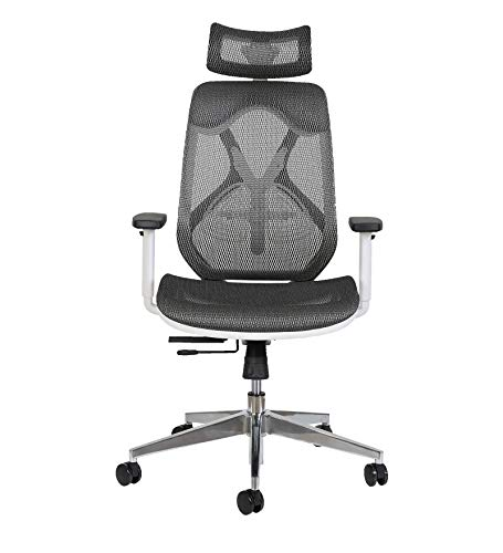 MISURAA High Back Ergonomic Chair for Office and Home