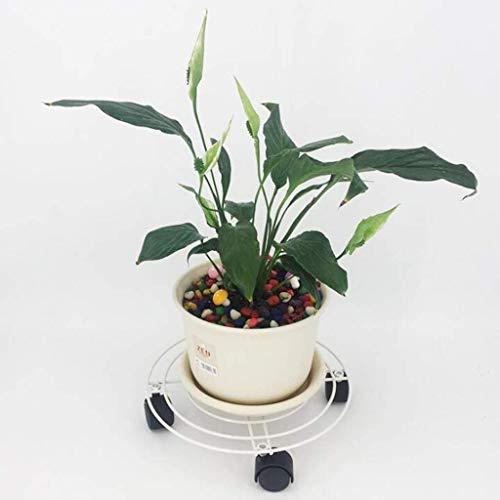 Piattino for le piante piattino piante titolare fatta di pallet in ghisa delle piante in ghisa di ruote for carichi pesanti in movimento - Supporto for il fiore rotondo (a colori, Marrone, Nero) SMBYL