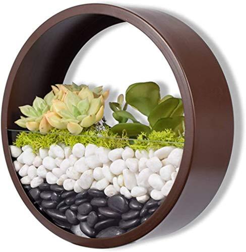 Macetero de pared Haing, 8 pulgadas, redondo, de metal, para flores, plantas suculentas, plantas de aire, mini cactus, plantas sintéticas, soporte de pared retro para decoración de interiores