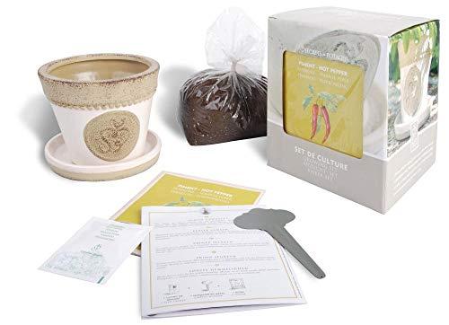Esschert Design Anzucht-Set Peperoni, bestehend aus: Saatgut und Blumenerde inkl. Raku-Blumentopf, Untersetzer und Pflanzschild