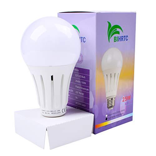 BIHRTC E27 25W LED Lampen A80 LED Birnen Kaltweiß 6000K-6500K Leuchtmittel Schraube LED Glühbirne Energiesparlampe ersetzt 200W Glühlampen,2800 Lumen,CRI80+,220°Abstrahwinkel,Nicht dimmbar