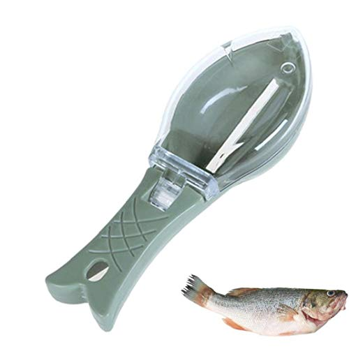 XKJFZ 1Pc Fisch Scaler Fisch-Skala-Remover Fischschuppen Schaber Küche-Werkzeug-Küche-Gadget für Fischschuppen Entfernen, Grün