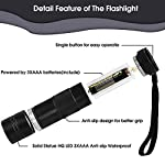 (2 Pack) UV Torch, Fulighture Pets Black Light 12LED 395nm, Dogs/Cats Urine Detector, Ultraviolet Flashlight Find Dry Stains on Carpets/Rugs/Floor with Batteries Included 11