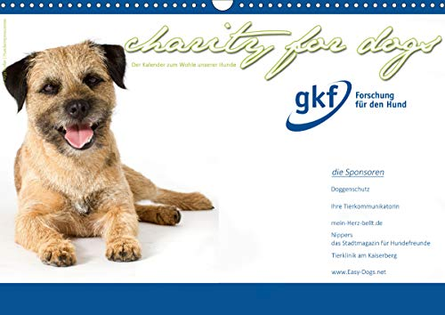 Charity for Dogs - der Kalender zum Wohle unserer Hunde (Wandkalender 2021 DIN A3 quer)