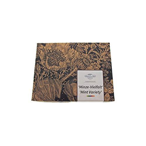 La variété de menthe - Kit cadeau de graines avec menthe poivrée, menthe aquatique et calament