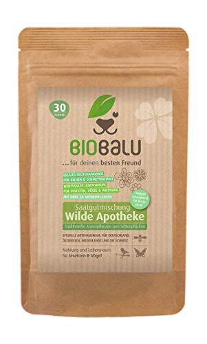 Biobalu Wilde Apotheke - 50 traditionelle Heilkräuter Samen - Bienenfreundliche Wildblumenwiese, Wildkräuter Samen mehrjährig & regional, Arzneipflanzen Saatgutmischung 30 g