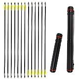 ZSHJGJR 12pcs Frecce in Fibra di Vetro 31 Pollici Frecce di Caccia con Freccia Punto Spine...