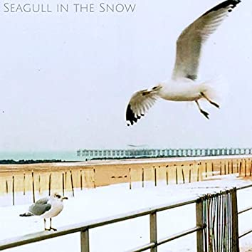 Seagull in the Snow