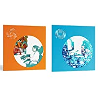 iZotope Ozone9 Standard+Neutron 3 Standard [Mix and Master Bundle V6] アイゾトープ