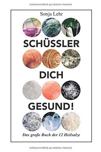 Schuessler Dich Gesund!: Das große Buch der 12 Heilsalze