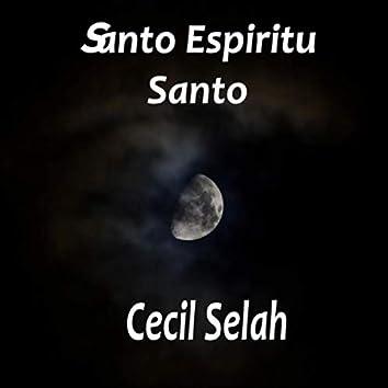 Santo Espiritu Santo