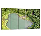 KiiAmy 5 Panels Art Wall Decor Ghost Shaped Drone Landscape Top Down Aerial View of a Small Pond in Artwork Modern Canvas Prints Office Bedroom Home Decor Framed Painting Ready to Hang (60''Wx32''H)