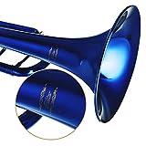 Immagine 2 eastar standard student tromba bb