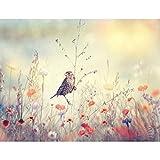 Papier peint intissé Oiseau fleurs 396 x 280 cm - Tapisserie Decoration Murale XXL Poster - Salon Appartement Photo d'art - 9334012a