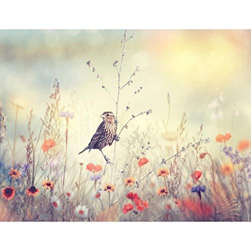 Fotobehang bloemen vogel - vliesbehang woonkamer slaapkamer kantoor hal decoratie wandschilderijen XXL moderne wanddecoratie - 100% MADE IN GERMANY - 9334aP bloemen. 396 x 280 cm - 9 Bahnen A