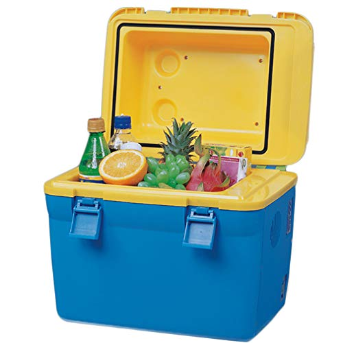 QHENS Mini-Autokühlschrank Reisekühlschrank, 12V 18L Campingkühlschrank Elektrische Kühlbox Kühler Wärmer Reise Tragbare Box Gefrierschrank Mini Home Camping Kühlbox