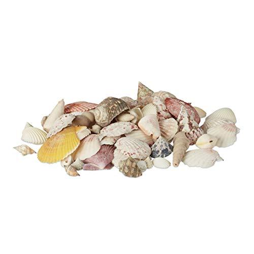 Relaxdays Muschel Deko Mix, Set mit Meeresschnecken, Dekomuscheln, echte Stranddeko zum Basteln, Badezimmer, 500 g, bunt