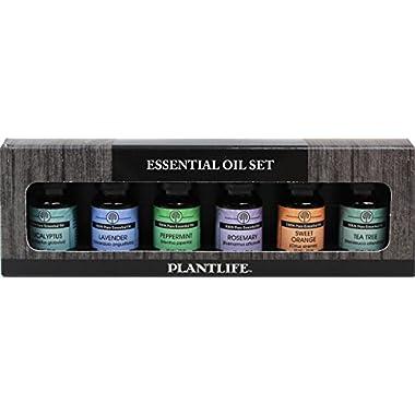 Plantlife Essential Oil Gift Set