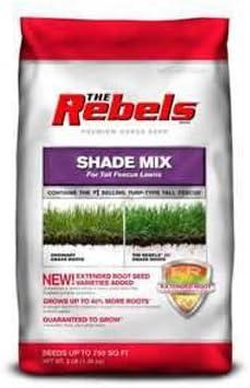 Pennington 100081778 The Rebels Tall Seed Fescue Grass Mix Shade Arlington Mall online shopping
